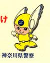 kanagawakenkei-2