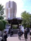 Yonezawap1010453